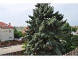 Eladó családi ház 242m2 Budapest, XI. kerület Kelenvölgy*